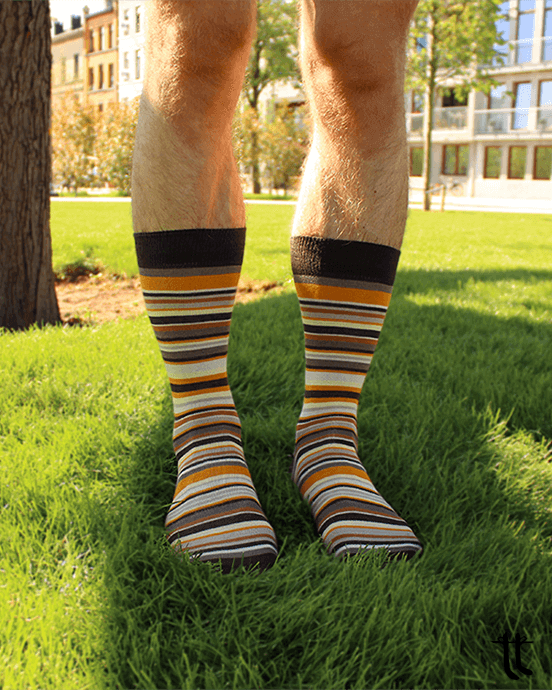 striped socks (brown)